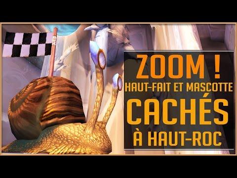 World Of Warcraft - Le Haut Fait et La Mascotte Cachés : ZOOM !