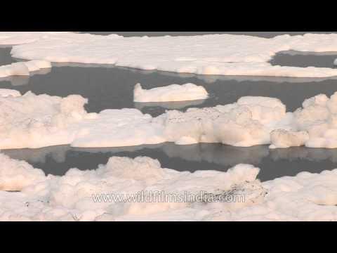 Detergent pollution in Yamuna River