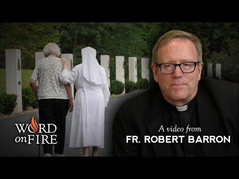 Fr. Robert Barron On Anti-catholic Prejudice video