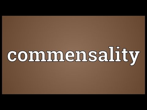 Header of commensality