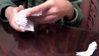 How To Fold An Origami Swan Part 1
