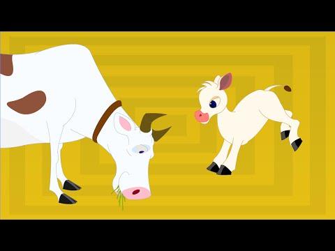 Thotathil Meyudhu - Chellame Chellam - Cartoon animated Tamil Rhymes For Kids video