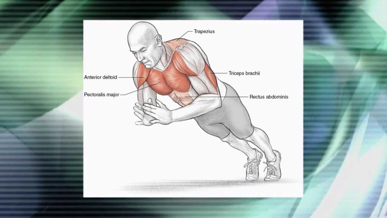 The anatomy of strength training