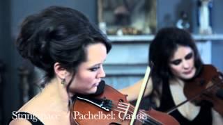 Pachelbel Canon Stringspace String Quartet Excerpt