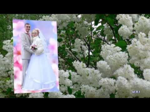 Самый красивый ролик по свадьбе...Лесоповал Белый лебедь
