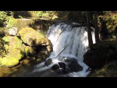 Whatcom Falls Park in Bellingham, Washington