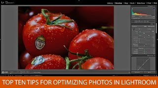 Top 10 Tips For Optimizing Photos in Lightroom