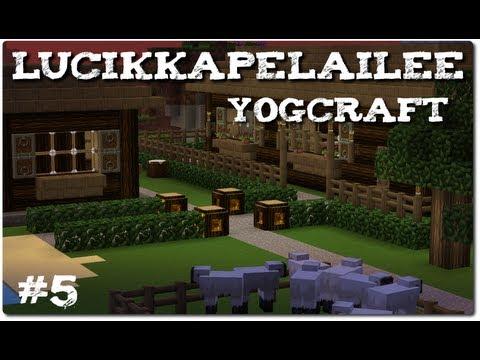 Minecraft: YogCraft - 5 - Derppaillaan ja ihmetellään mehiläisiä!
