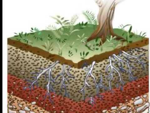 El suelo youtube for El suelo y sus capas