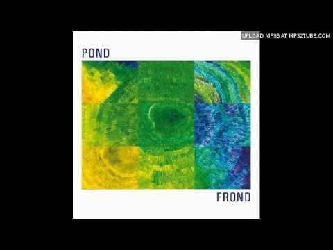 Pond - Cloud City