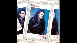 My Heart Goes Bang(Zukei remix Minimum Dohaha Version)-Dead Or Alive