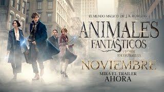 ANIMALES FANTÁSTICOS Y DÓNDE ENCONTRARLOS - Trailer 3 - Oficial Warner Bros. Pictures