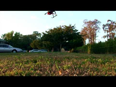 Fast Flight of The Honey Bee FP (ESky HBFP V2)