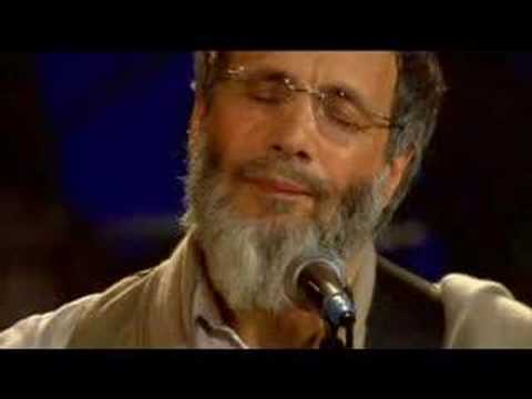 Yusuf Islam - Where do the children play