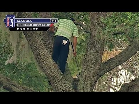 BETTER SHOT THAN TIGER WOODS? Sergio Garcia Climbs Tree for Amazing One Handed Shot