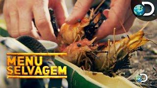 Banquete de reis com frutos do mar defumados - Menu Selvagem l Discovery Channel