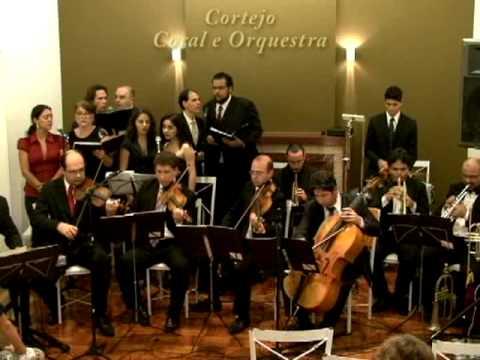 Orinoco Flow - Enya - Cortejo Música para Casamento