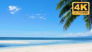 download lagu Relaxing Nature  In Ultra : Tropical Beach In gratis