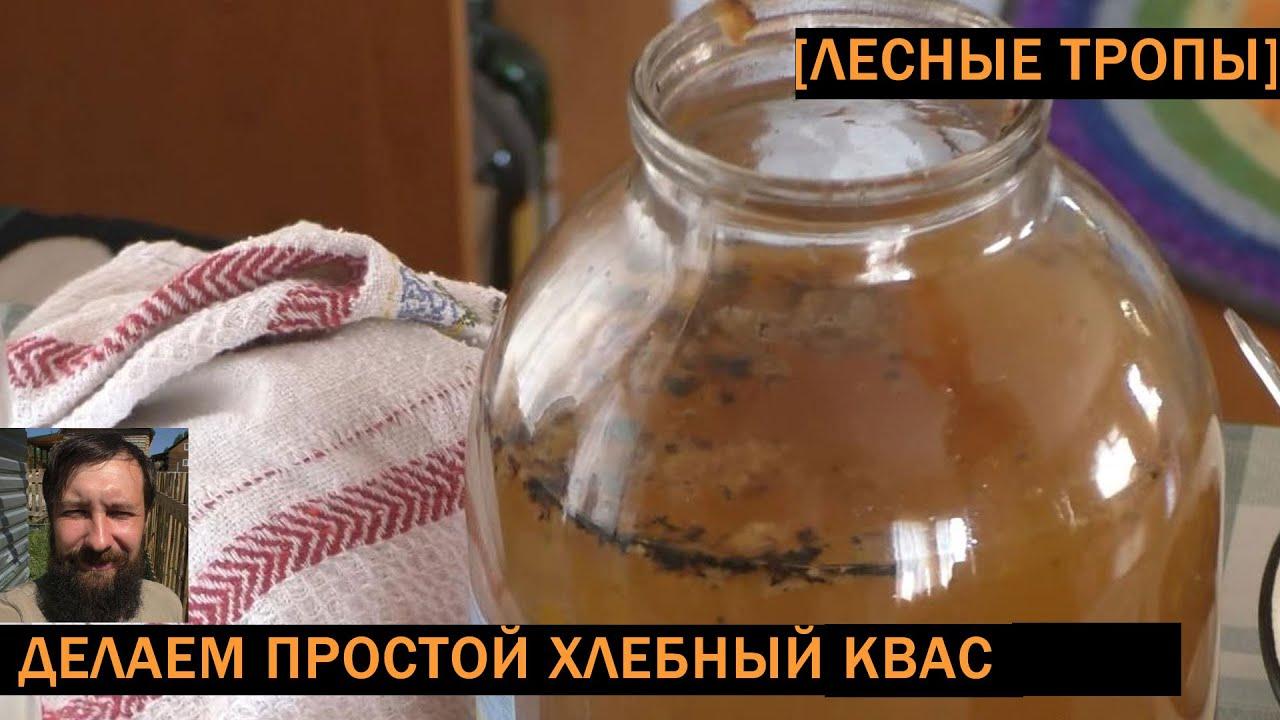 Простой рецепт приготовления кваса в домашних условиях