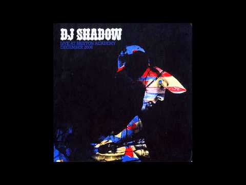 DJ Shadow - This Time (I'm Gonna Try It My Way) - Live @ Brixton Academy December 2006