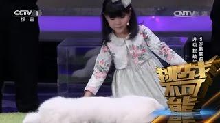 [挑战不可能(第一季)] 总决赛:5岁韩嘉盈哄睡萌宠 升级挑战能否成功