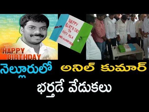 నెల్లూరులో అనిల్ కుమార్  భర్తడే వేడుకలు Anil Kumar Yadav Birthday Celebrates |Cinema Politics