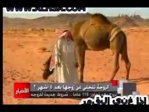 اكبر عريس بالعالم سعودي.3gp