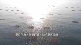 oyster rack in Golden Coast Tainan