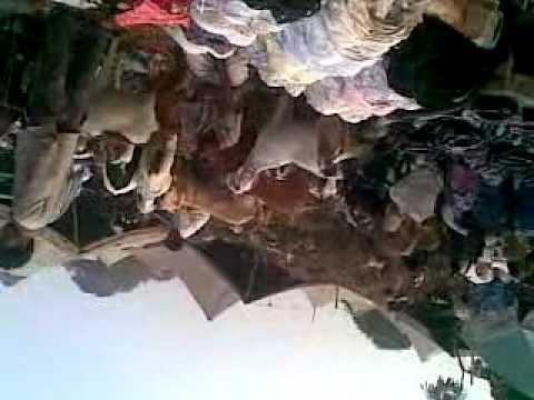 Mina Bazar New Delhi Zayed Ali&Akshay Khujwa Siwan Mob=9199786800
