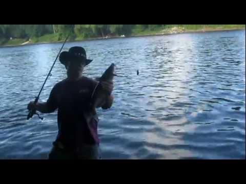 Fishing report - NJ Fishing | Ken Beam & Curt Ryder Fishing | Catfishing Delaware River | NJ Catfishing with Ken Beam Video