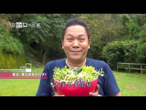 台灣-在台灣的故事-20181016-神話草食村