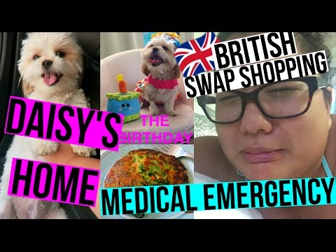 MEDICAL EMERGENCY, DAISY'S HOME & UK SWAP SHOPPING!!