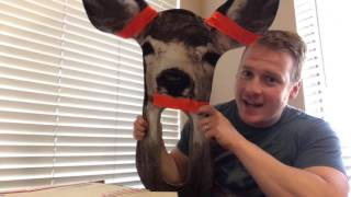 Ultimate Predator Deer Decoy Unboxing