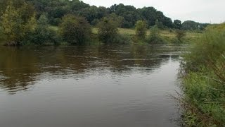 Day-ticket barbel stretch on the middle Severn (Blog entry 690)