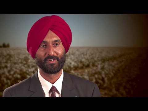 BT Cotton in India - The Farmer's Perspective