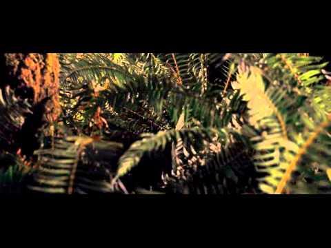 (Fake) Plants vs Zombies movie trailer