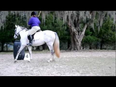 Joanna C and HF Oliana Young Horse Test A EOH December 2012