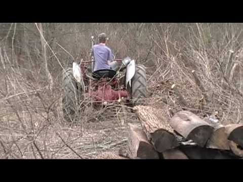 Pulling Out Bushes with the 53 Ford Jubilee Tractor