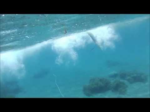 Philippines spearfishing Bacong, Negros Oriental