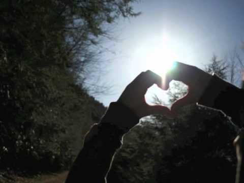 Happiness- The Fray Lyrics