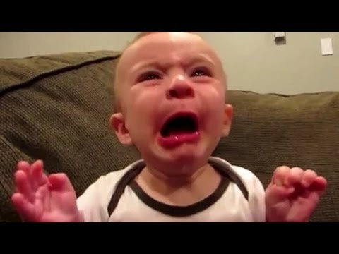 Babies Eating Lemons for First Time Compilation - Funny Videos