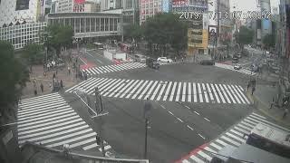 【LIVE CAMERA】渋谷スクランブル交差点 ライブ映像