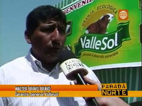 Crianza de Cuyes, cria de cuy, crianzas de cuy, reportaje a Granja ValleSol Sac.flv