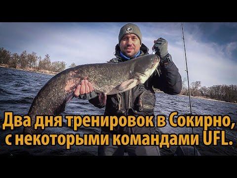 запрет рыбной ловли на днепре 2016