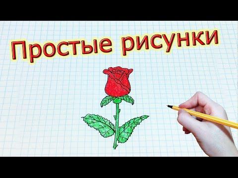 Видео как нарисовать розу детям