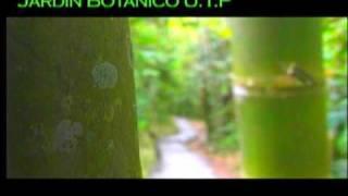 Jardin Botanico Universidad Tecnologica de Pereira