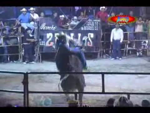LA GANADERÍA QUE VIENE ROMPIENDO MADRES... RANCHO LOS DOS POTRILLOS