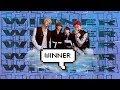 download lagu      an (un)helpful guide to winner    gratis