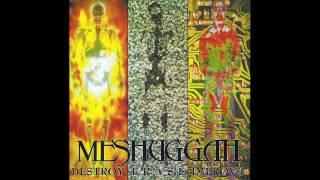 Watch Meshuggah Future Breed Machine video