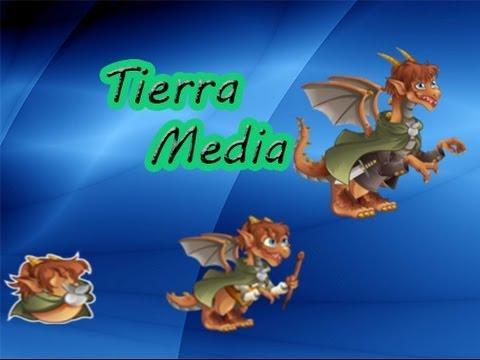 media dragon city
